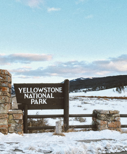 Finally made it to Yellowstone National Park...